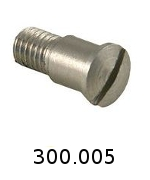 300005