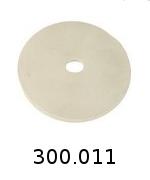 300011
