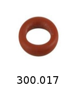 300017