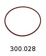 300028