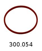 300054