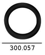 300057 2