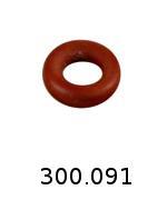 300091