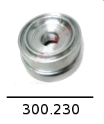 300230 1