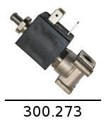 300273