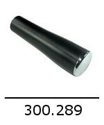 300289 1