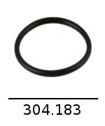 304183