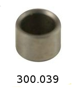 300039