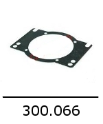 300066