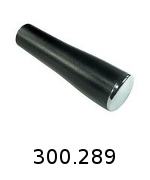 300289