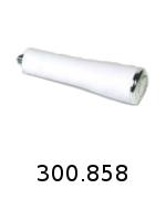 300858