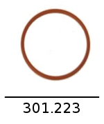 301223