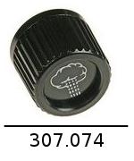 307074