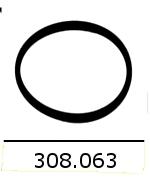 308063